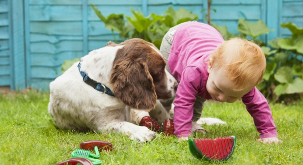 Guest Blog: Pets and Children